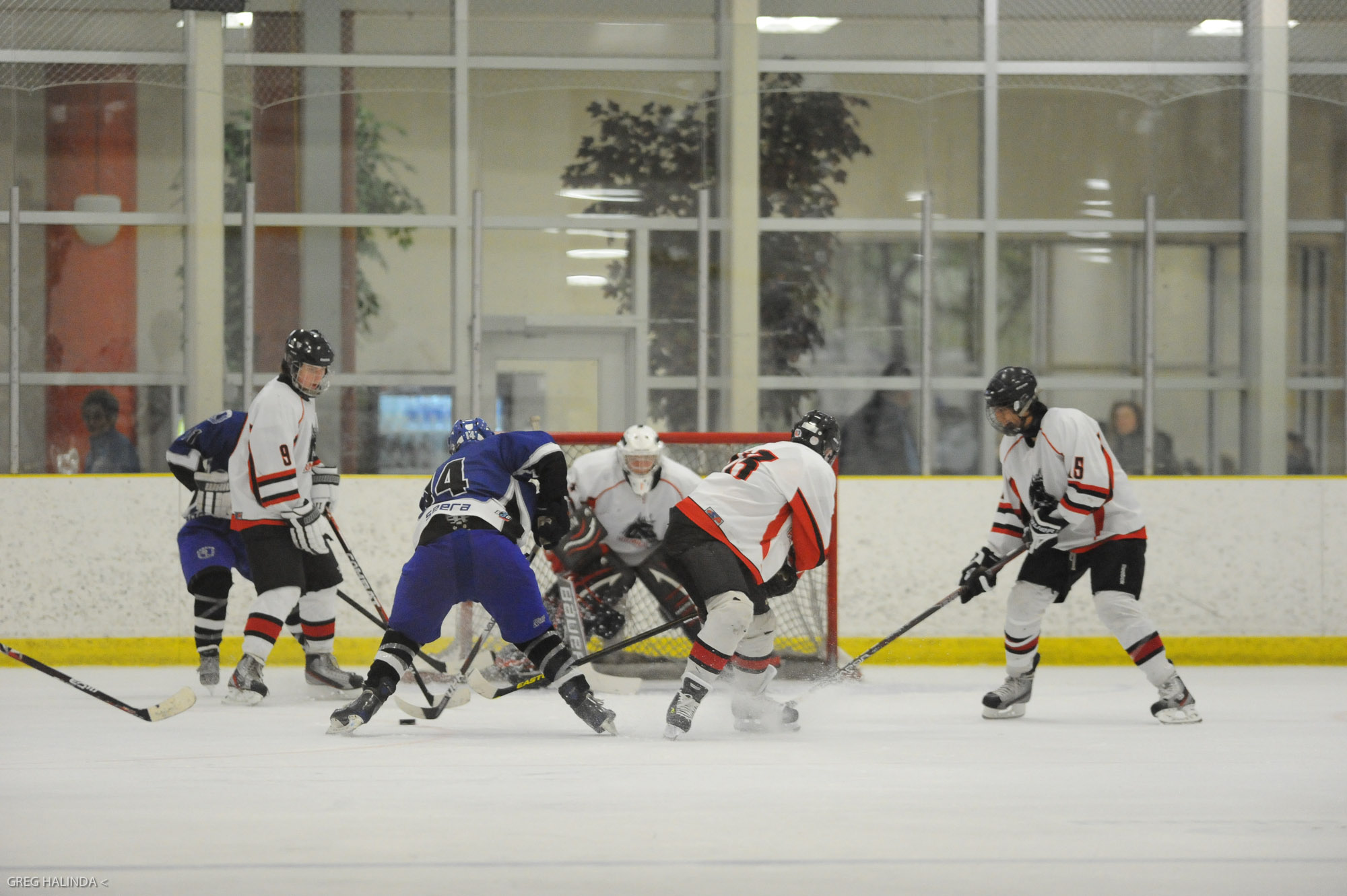 Midget ajax pickering hockey